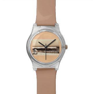 The Wildwoods Watch