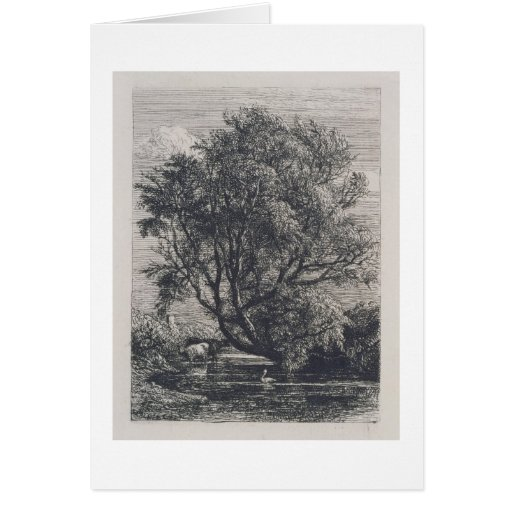 The Willow (etching) Cards