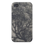 The Willow (etching) iPhone 4 Cover