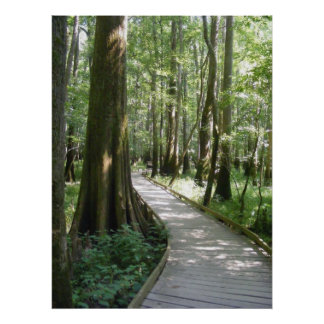 The Winding Path Poster
