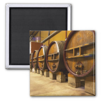 The wine cellar winery with big old wooden casks magnet