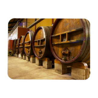 The wine cellar winery with big old wooden casks vinyl magnet