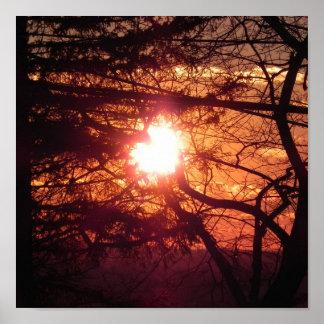 The Winter Sun Poster