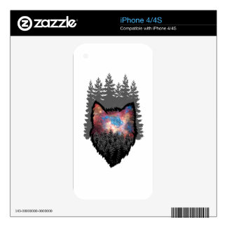 The Winterland iPhone 4S Decal