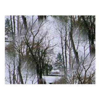 The Winterscene Post Card