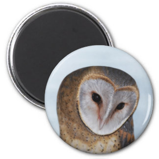 The wise old owl 2 inch round magnet