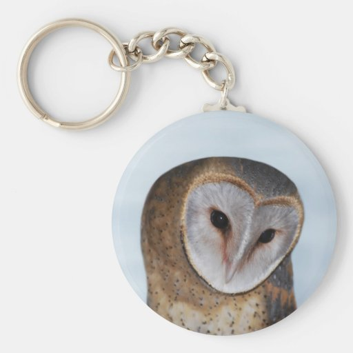 The wise old owl basic round button keychain