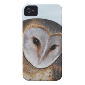 The wise old owl Case-Mate iPhone 4 case