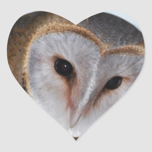 The wise old owl heart sticker