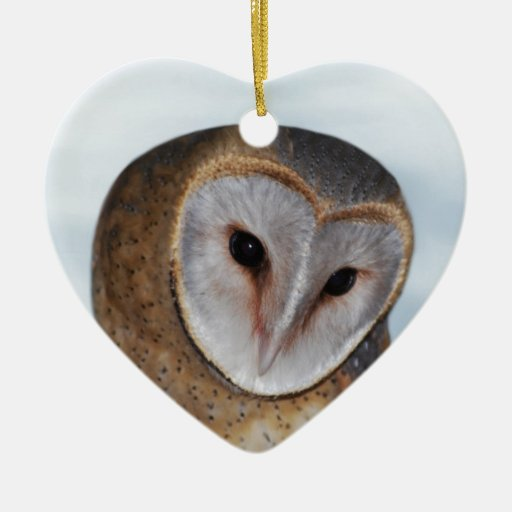 The wise old owl ornaments