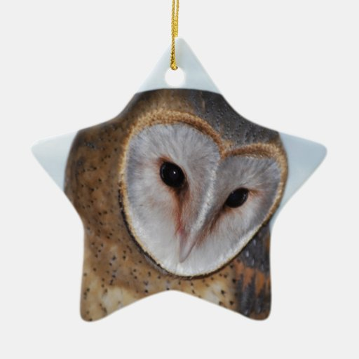 The wise old owl christmas ornaments