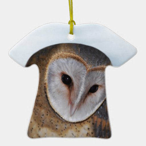 The wise old owl christmas ornament