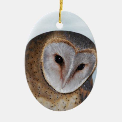The wise old owl ornament