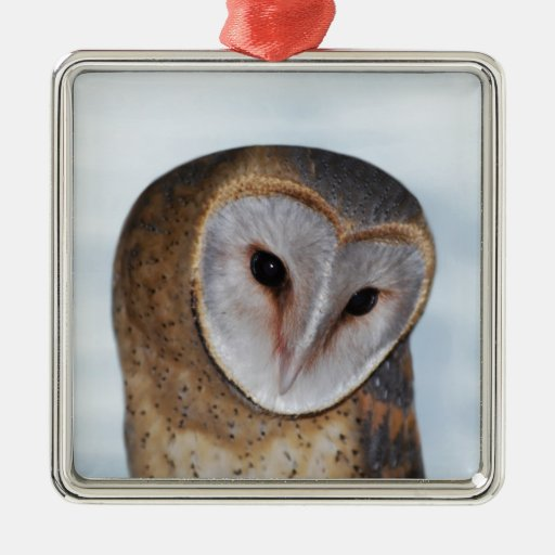 The wise old owl christmas tree ornament