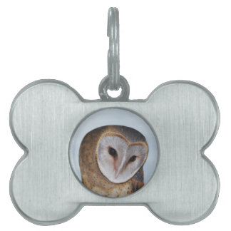 The wise old owl pet ID tag