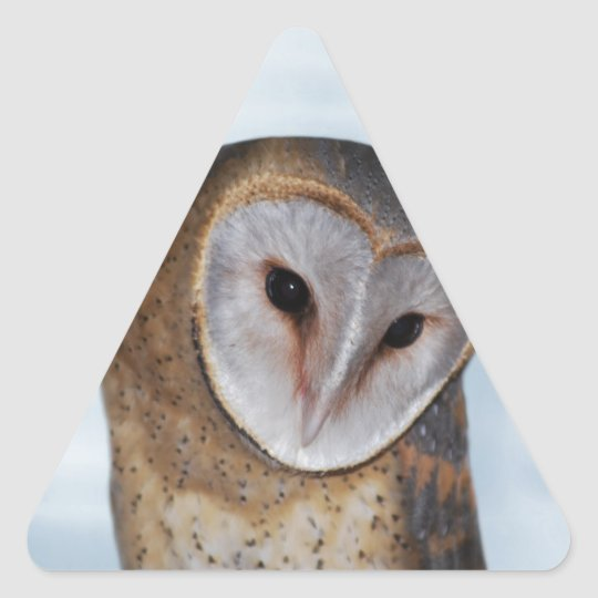 The wise old owl triangle sticker
