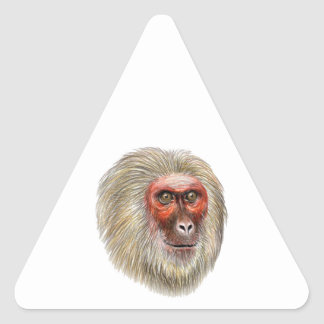 THE WISE ONE TRIANGLE STICKER