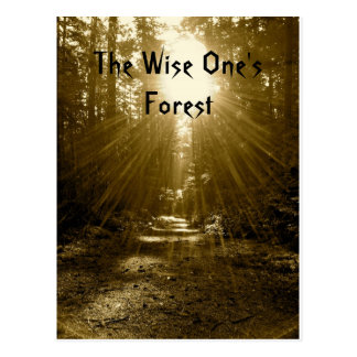 The Wise One's Forest Postcard