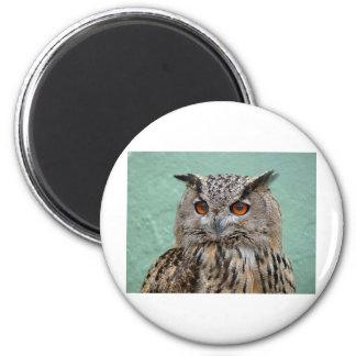 The Wise Owl Fridge Magnet