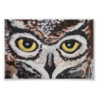 The wise owl photo print