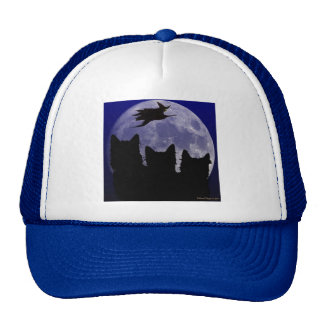 The Witching Hour Hat
