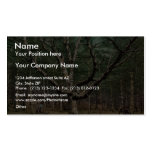 The Wizard tree, Cathedral Woods, Intervale, N.H. Business Card Template