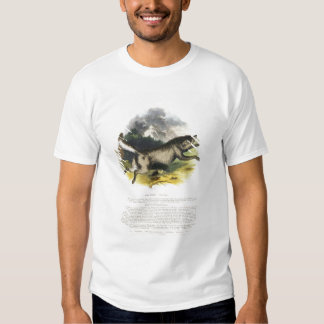 The Wolf (Canis lupus) educational illustration pu T-Shirt