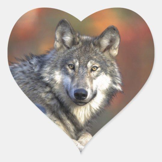The Wolf Heart Sticker
