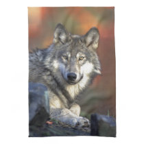 The Wolf Towel