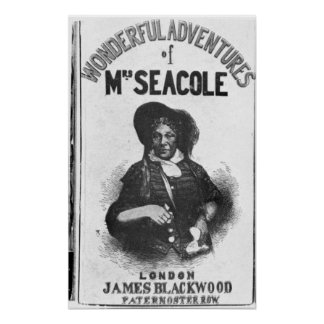 The Wonderful Adventures of Mrs Seacole' Poster