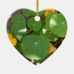 The wonders of nature christmas ornament