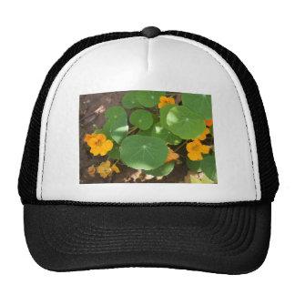 The wonders of nature trucker hat