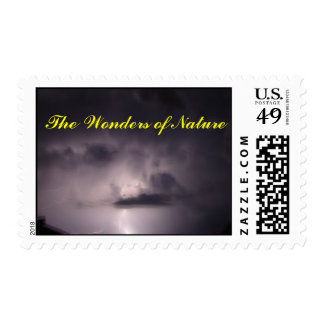 The Wonders of Nature Stamp