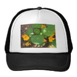 The wonders of nature trucker hat