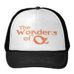 The Wonders of Oz Cap Mesh Hat