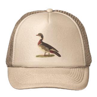 The Wood Duck(Anas sponsa) Trucker Hat