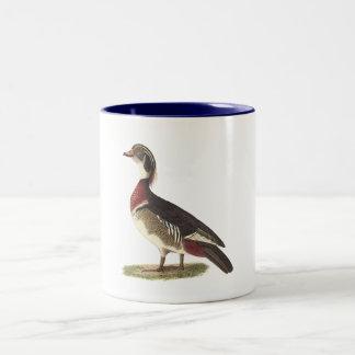 The Wood Duck(Anas sponsa) Two-Tone Coffee Mug