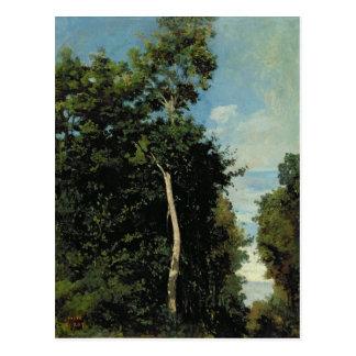 The Wood on the Cote de Grace in Honfleur Postcard