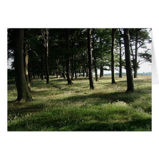 The Woodland edge Card