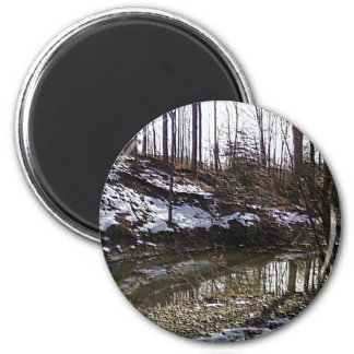The Woods 3 Magnet