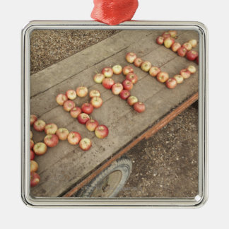 The word 'apple' in apples christmas tree ornaments