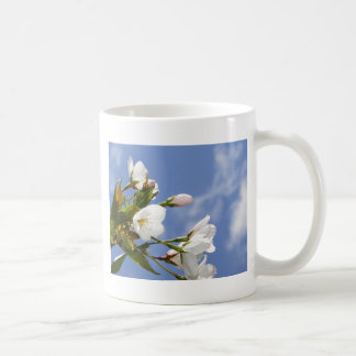 The work of the cherry tree bloom which is Kansai  Coffee Mugs
