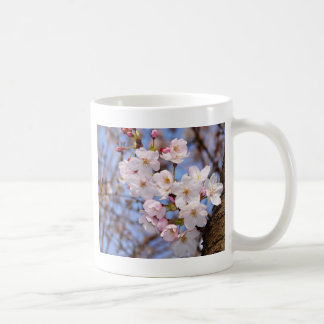 The work of the cherry tree bloom which is Kobe Classic White Coffee Mug
