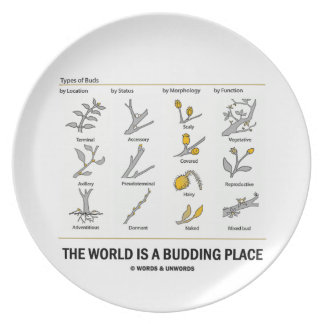The World Is A Budding Place (Types Of Buds) Plate