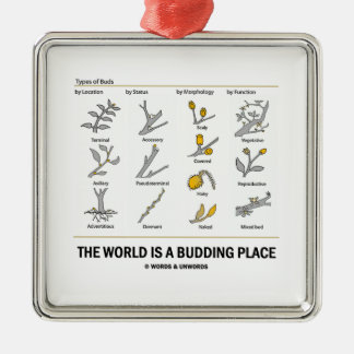 The World Is A Budding Place (Types Of Buds) Square Metal Christmas Ornament