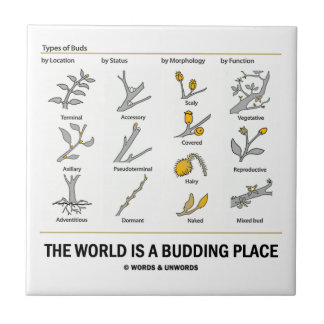 The World Is A Budding Place (Types Of Buds) Tile