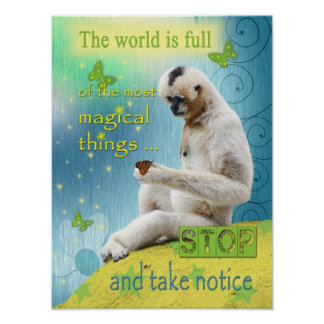 The World is Full of Magic Poster