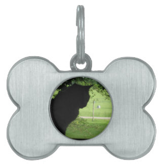 The World Outside Pet Name Tag