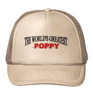 The World s Greatest Poppy Hats