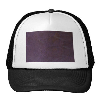 The WORLD through Tinted Glasses Mesh Hat